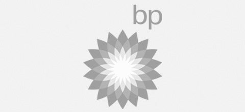 bp Ludic Consulting Clients   We work with world class organisations - Ludic Consulting