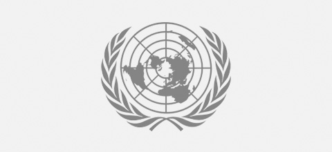 united-nations Ludic Consulting Clients   We work with world class organisations - Ludic Consulting